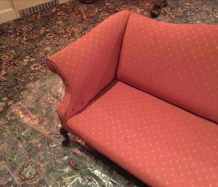 Carpet & Upholstery Cleaning in Staten Island Before