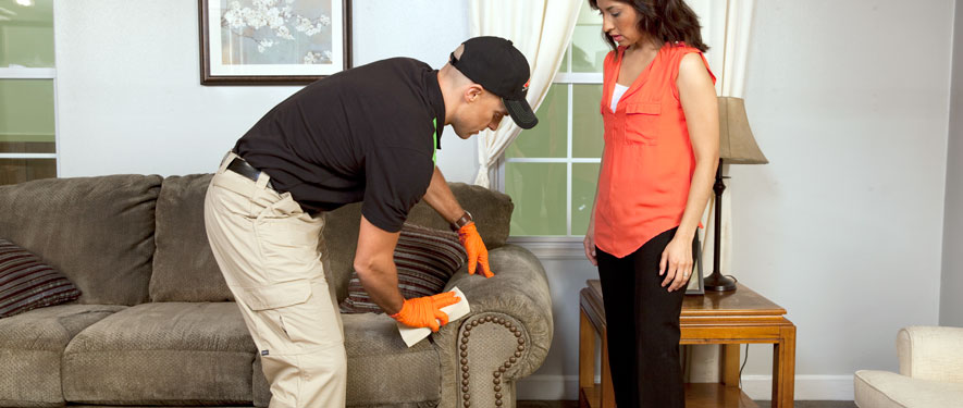 Staten Island, NY carpet upholstery cleaning